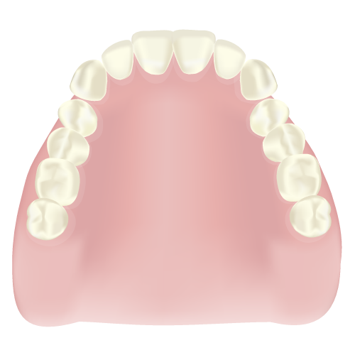 札幌市豊平区 たく歯科 総入れ歯